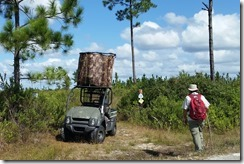 Hunt buggy