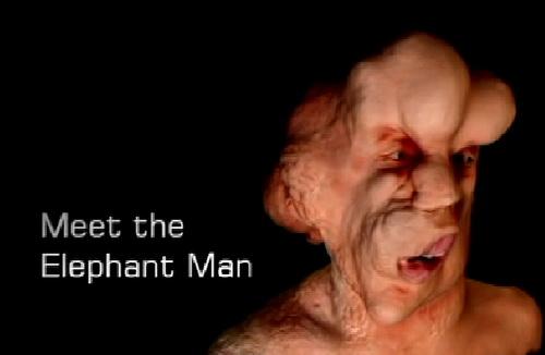 Cz³owiek s³o? / Meet the Elephant Man (2011) PL.TVRip.XviD / Lektor PL