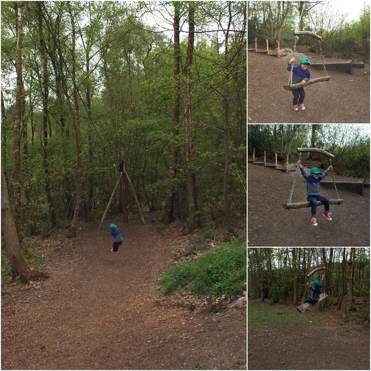 swing and zipline