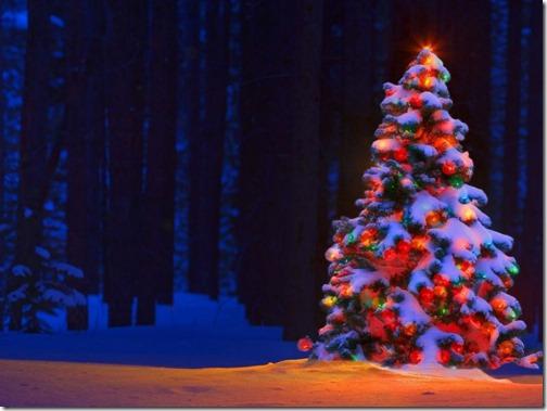 2222navidad imagenes grandes (5)