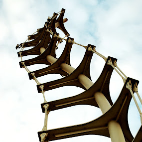 Reaching to the sky  by Amy-louise Maszuchin - Buildings & Architecture Statues & Monuments ( monuments, art, architecture )