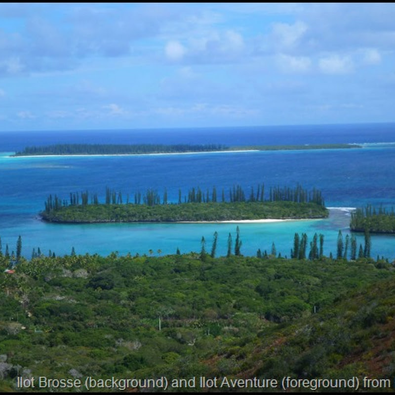 Logbook: Ilot Brosse, Ile des Pin, Nouvelle Caledonie