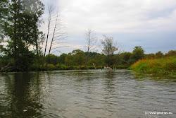 V úseku mezi Jindřichovem a Tršnicí nás čeká klidný meandrující úsek mezi loukami.