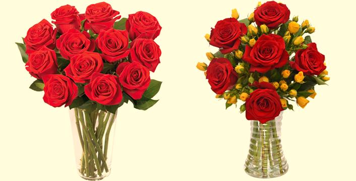 [foto de rosas vermelhas + rosas amarelas]