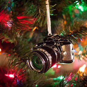 by Mary Phelps - Public Holidays Christmas ( canon, lights, tree, ornament, camera, christmas, bokeh,  )
