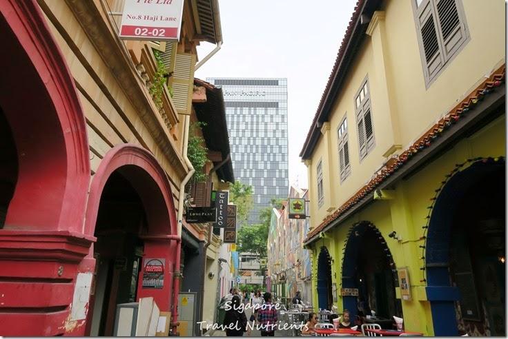 新加坡 哈芝巷 (14)