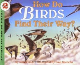 How Do Birds Find Their Way
