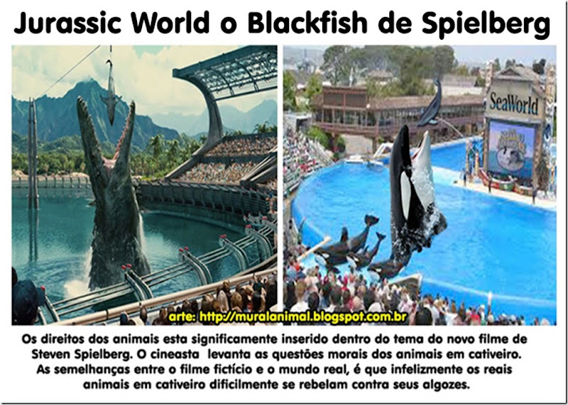 seaworld-blackfish