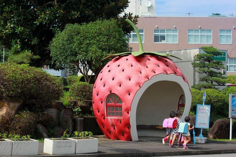 konagai-isahaya-fruit-bus-stops-11