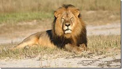 Leon Cecil 2