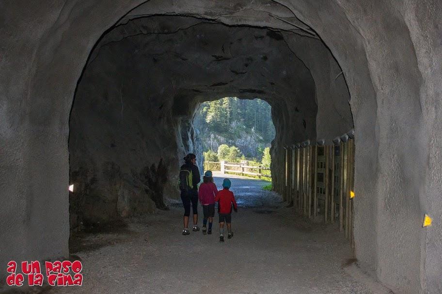 En el túnel hay paneles informativos de la flora y fauna de la zona. ©aunpasodelacima