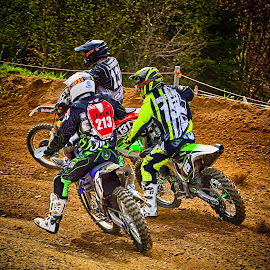 by Marco Bertamé - Sports & Fitness Motorsports ( fight, 213, back, 15, number, race, motocross, dust, three, clumps, trio, 131, compettion, crowded )