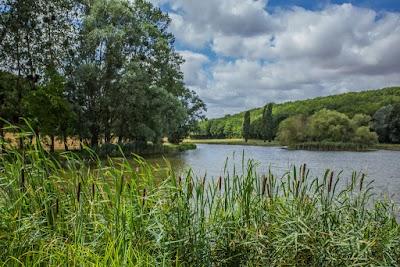 Sites et Paysages Au Bois Joli © 2015_Kinaphoto_41-Etang Cornoy.jpg