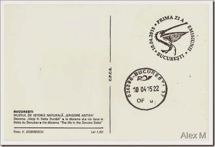 2062_Pelicanul cret_Antipa_5-00lei-verso