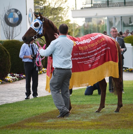 race 8_magnapal 6