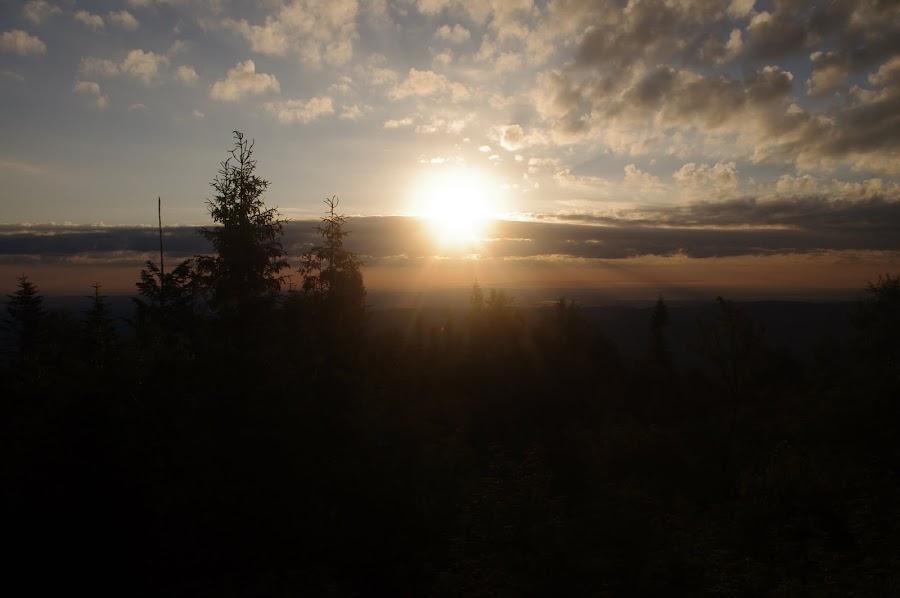 Схід Сонця на Лисій горі