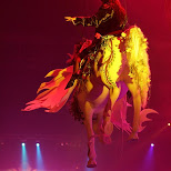 horses in the air at sensation black in Amsterdam, Noord Holland, Netherlands