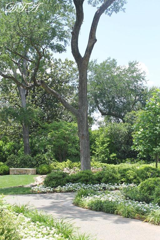 Dallas Arboretum 076