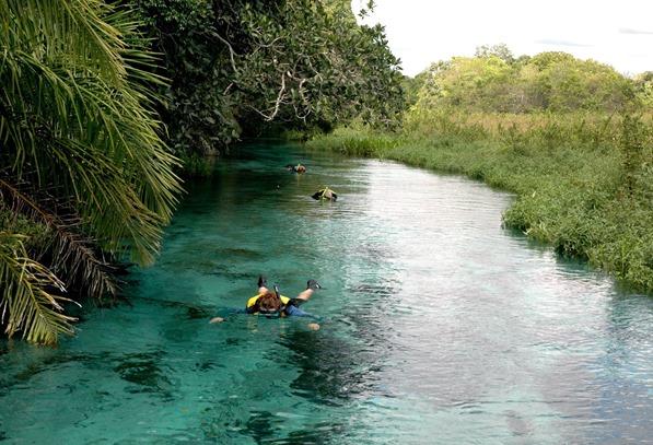 Flutuação no Rio Sucuri | Foto: André Turatti