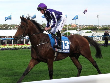 cox plate_highland reel 1