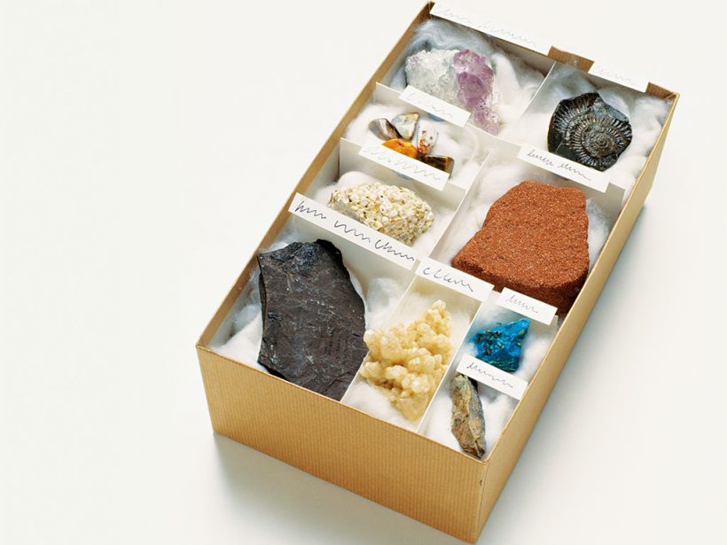 Fossils and minerals take the antiques market by storm