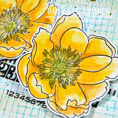 C4CSketch_WithYellowBlooms_B_DanielleLounds