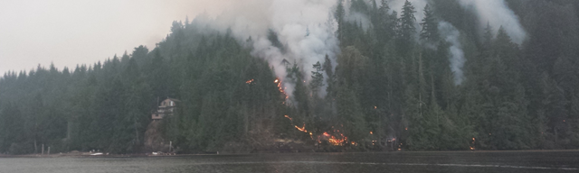 A forest fire burns on Dog Mountain near Sproat Lake, British Columbia, July 2015. Photo: BC Wildfire Service