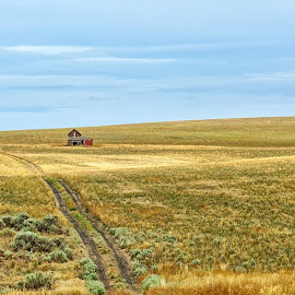 Old house on the prairie by Gaylord Mink - Landscapes Prairies, Meadows & Fields ( horizon, tracks, house, prairie, abandoned )