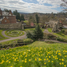 Guildford garden by Yordan Mihov - City,  Street & Park  City Parks ( england, park, castle, surry, flowers, guildford garden )