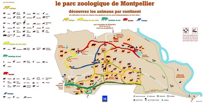 Montpellier plan