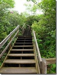UGH!!  The steps go up!!