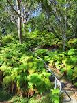 Wellings Reserve, Sydney  [2014]