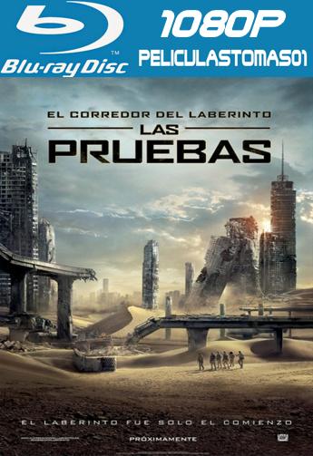 El Corredor del Laberinto 2: Las Pruebas (2015) [BDRip m1080p/Dual Castellano-ingles]