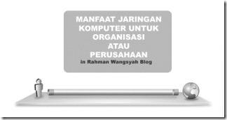 jaringan komputer untuk perusahaan atau organisasi