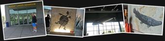 View Lake Superior Shore Aquarium