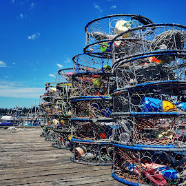Crabbing  by Todd Reynolds - City,  Street & Park  Street Scenes