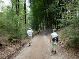 Op weg naar de finish (laatste deel van de route).