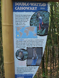 The sign for the double - wattled cassowary at the Nashville Zoo 09032011