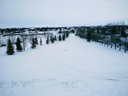 Didsbury Golf Course, 2302 20 Ave, Didsbury, AB T0M 0W0, Canada, Golf Club, state Alberta