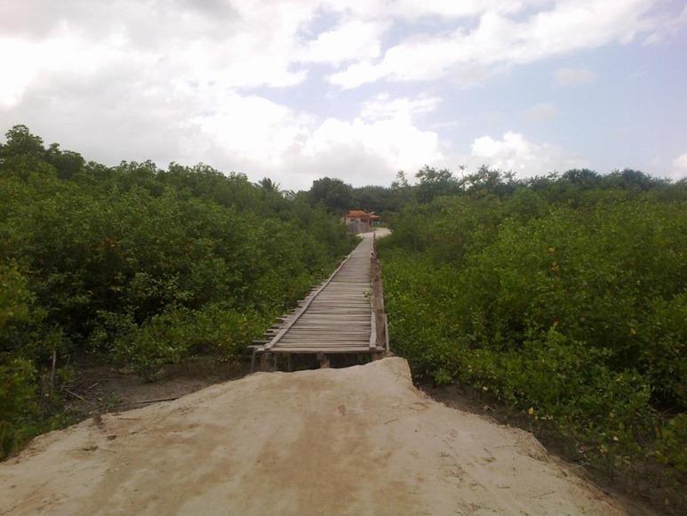 Caminho da Ponte - Apicum-Açu, foto: Apicum Açu pagina Facebook