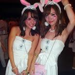 bunnies at Sensation Tokyo 2015 in Chiba, Tokyo, Japan