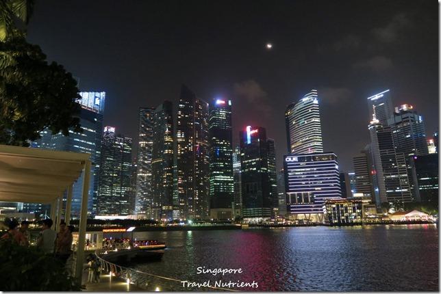 新加坡河岸 老巴剎 (1)