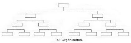 Tall Organisation