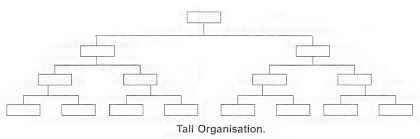 Tall Organisation