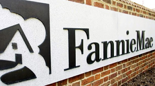 Introducing Fannie Mae