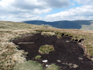 "Another dry peat bog - it was very ""spongy"""