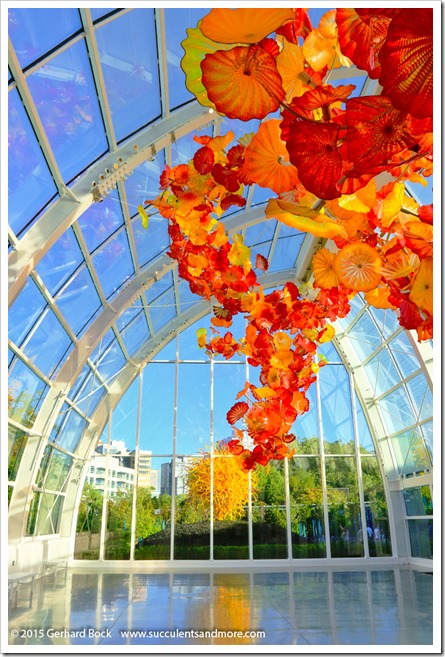 150626_Seattle_ChihulyGardenGlass_0092