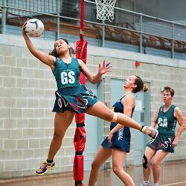 Spider catch by Helena Lindgren - Sports & Fitness Basketball ( netball, illawarra, catch, sport, jump )