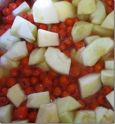 Eberesche-Apfel-Karamel