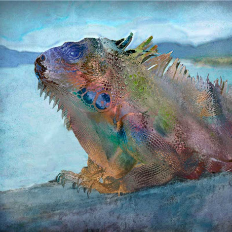 "The ""Iguana"" piece from the ""2012"" collection"